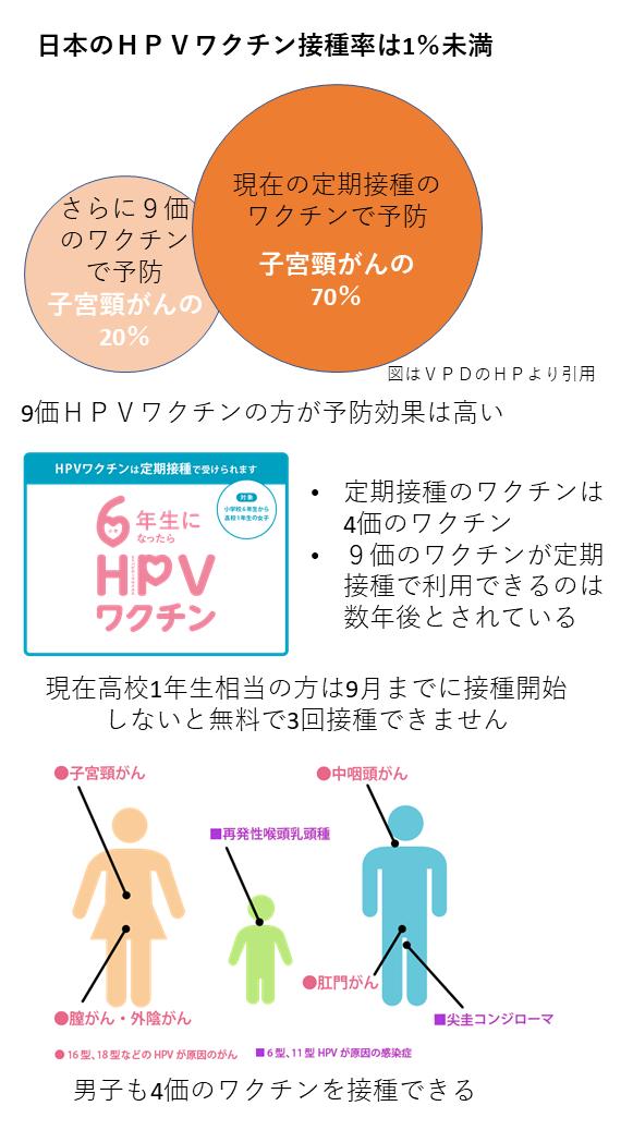 HPVVAC